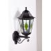 Настенный светильник PETERSBURG lead GLASS 79801 lg Bl