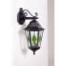 Настенный светильник PETERSBURG lead GLASS 79802 lg Bl